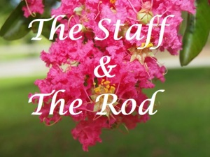 the staff and the rod