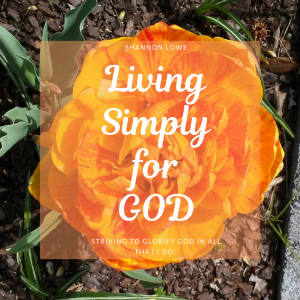Living Simply for God