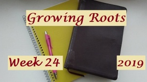 Growing Roots wk 24