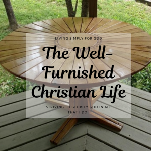 well furnished life 2