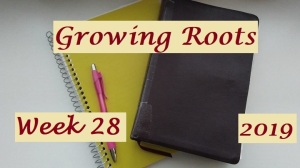 Growing Roots wk 28