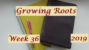 Growing Roots wk 36